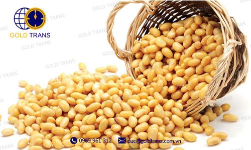 thủ tục nhập khẩu đậu tương